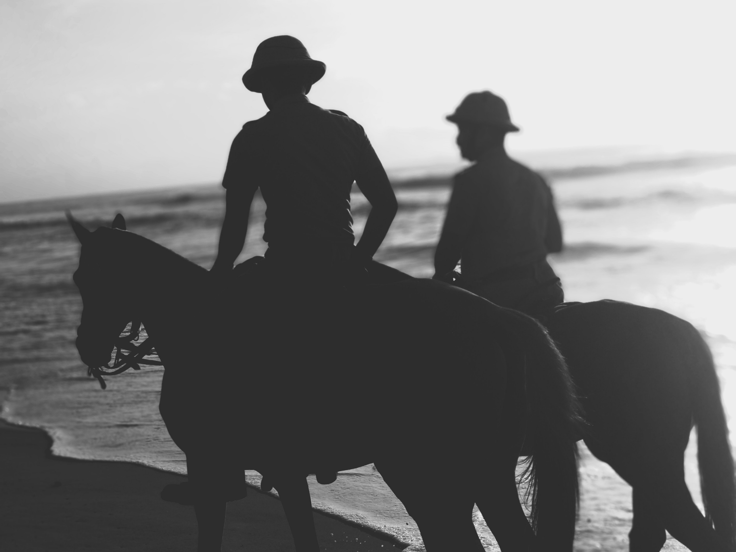 History Of Equine Assisted Therapy